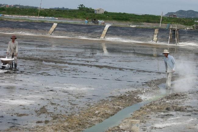 Quy trình cải tạo ao và xử lý nước đầu vụ giúp nuôi tôm hiệu quả