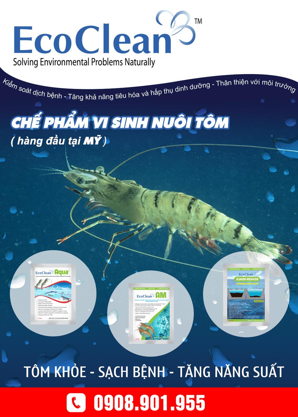 Chế phẩm vi sinh trong nuôi trồng thủy sản