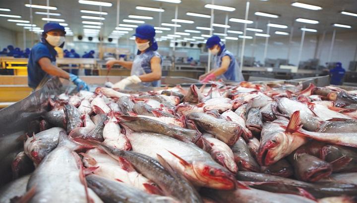Hà Nội khai mạc hội chợ cá tra và các thủy sản Việt Nam vào ngày 6/10/2017